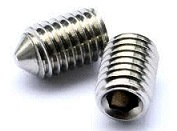 Gurb Screw Pointed